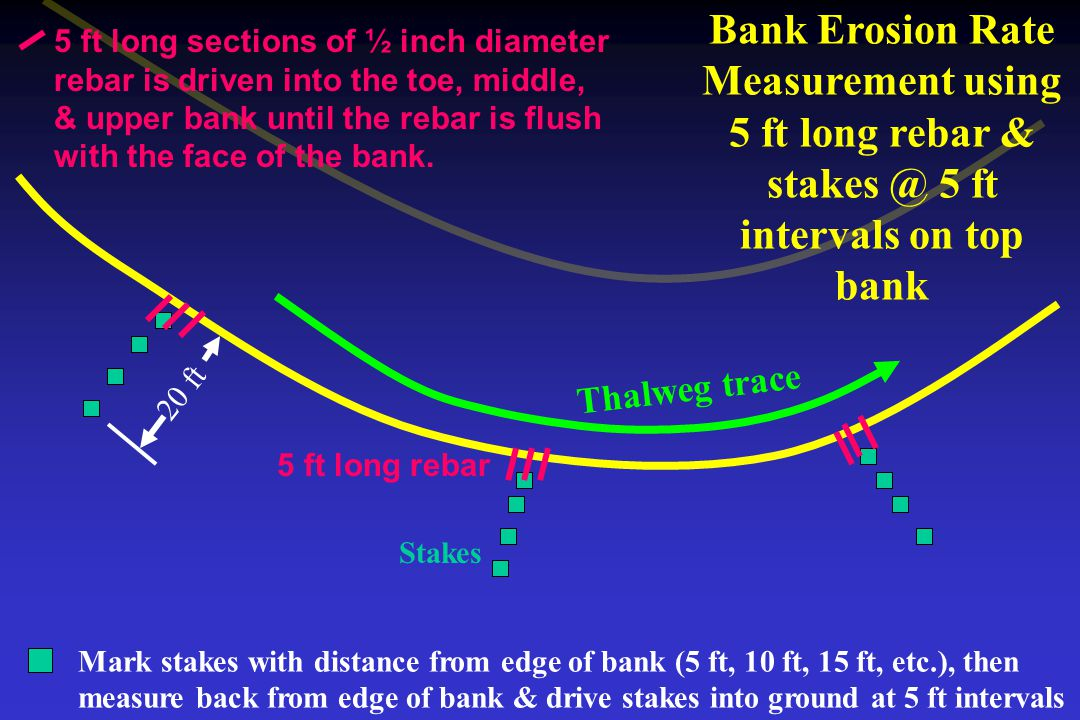 Bank Erosion Rate Measurement using 5 ft long rebar & stakes @ 5 ft intervals on top bank