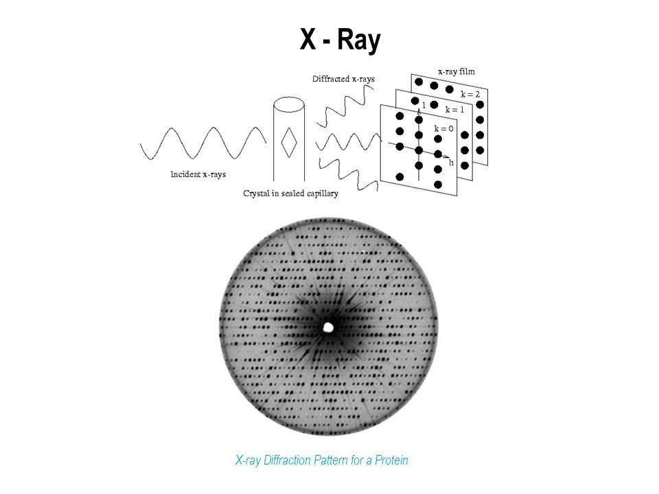 X - Ray X-ray Diffraction Pattern for a Protein