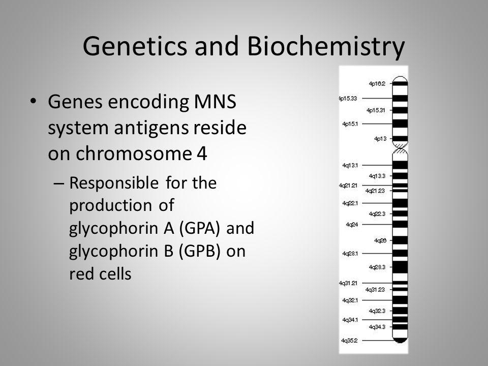 Genetics and Biochemistry