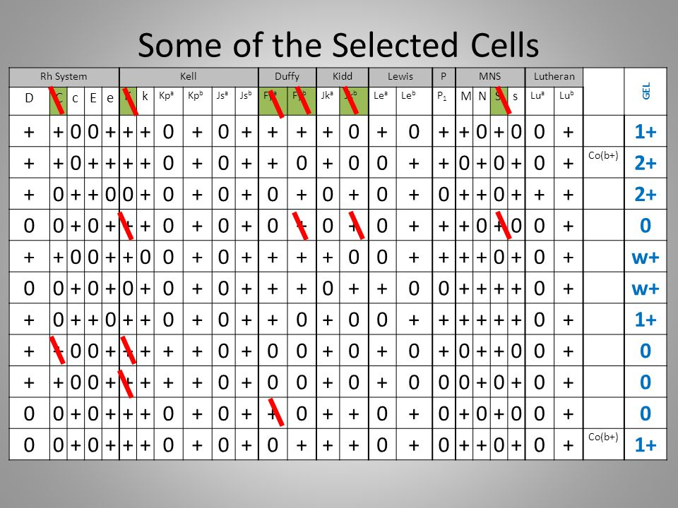 Some of the Selected Cells