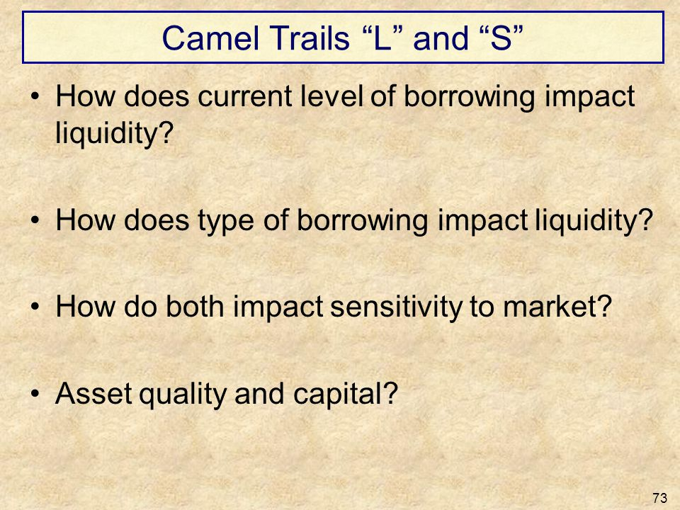 Camel Trails L and S