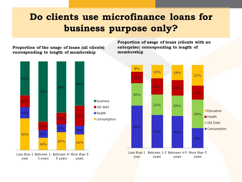 Do clients use microfinance loans for business purpose only