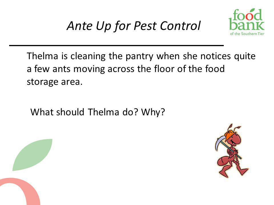 Ante Up for Pest Control