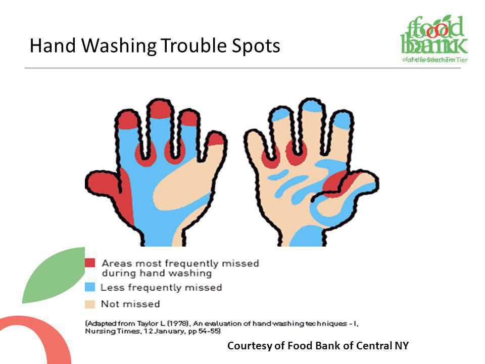 Hand Washing Trouble Spots