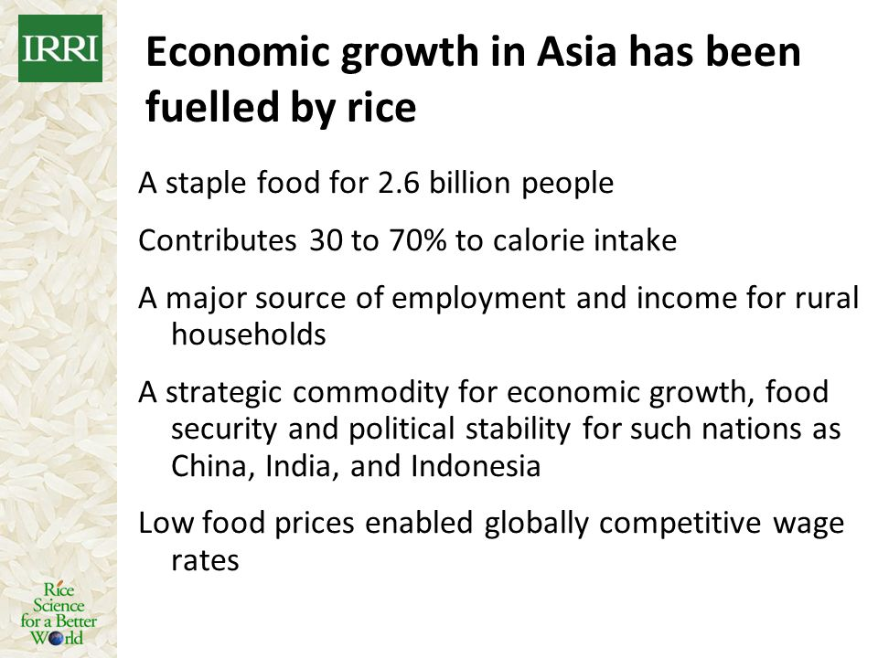 Economic growth in Asia has been fuelled by rice