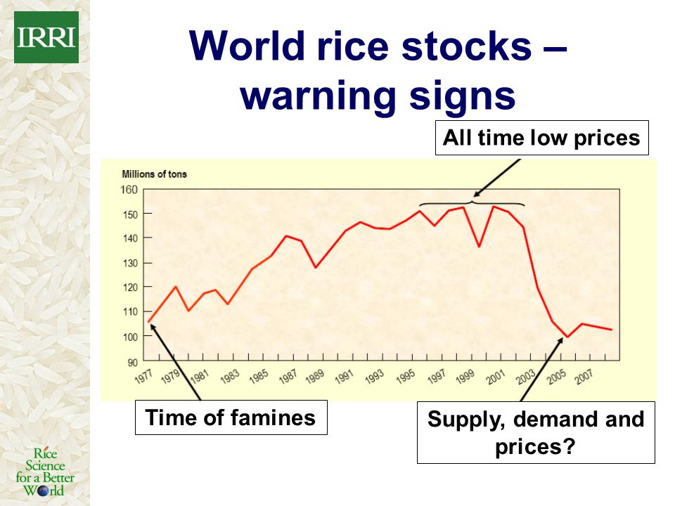 World rice stocks – warning signs Supply, demand and prices
