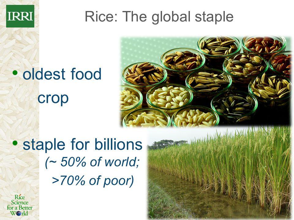 Rice: The global staple