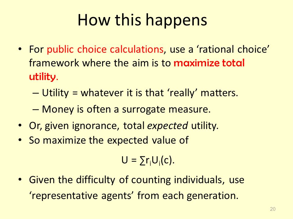 How this happens For public choice calculations, use a 'rational choice' framework where the aim is to maximize total utility.