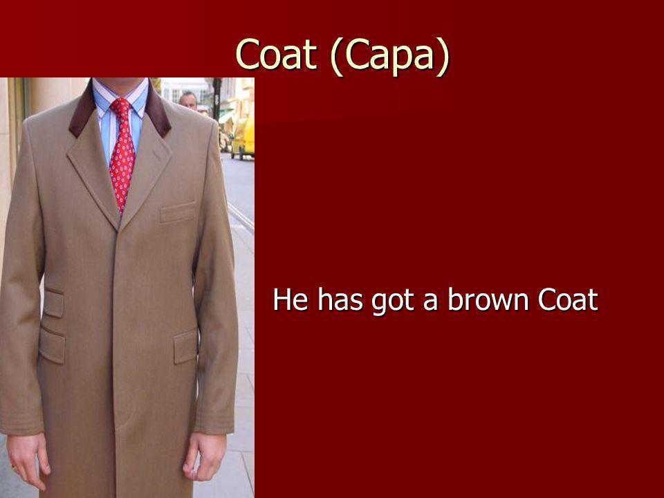 Coat (Capa) He has got a brown Coat
