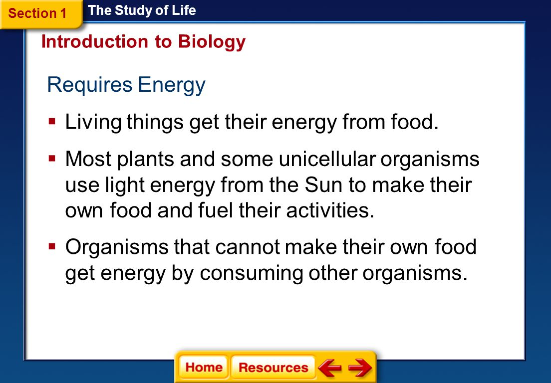 Living things get their energy from food.