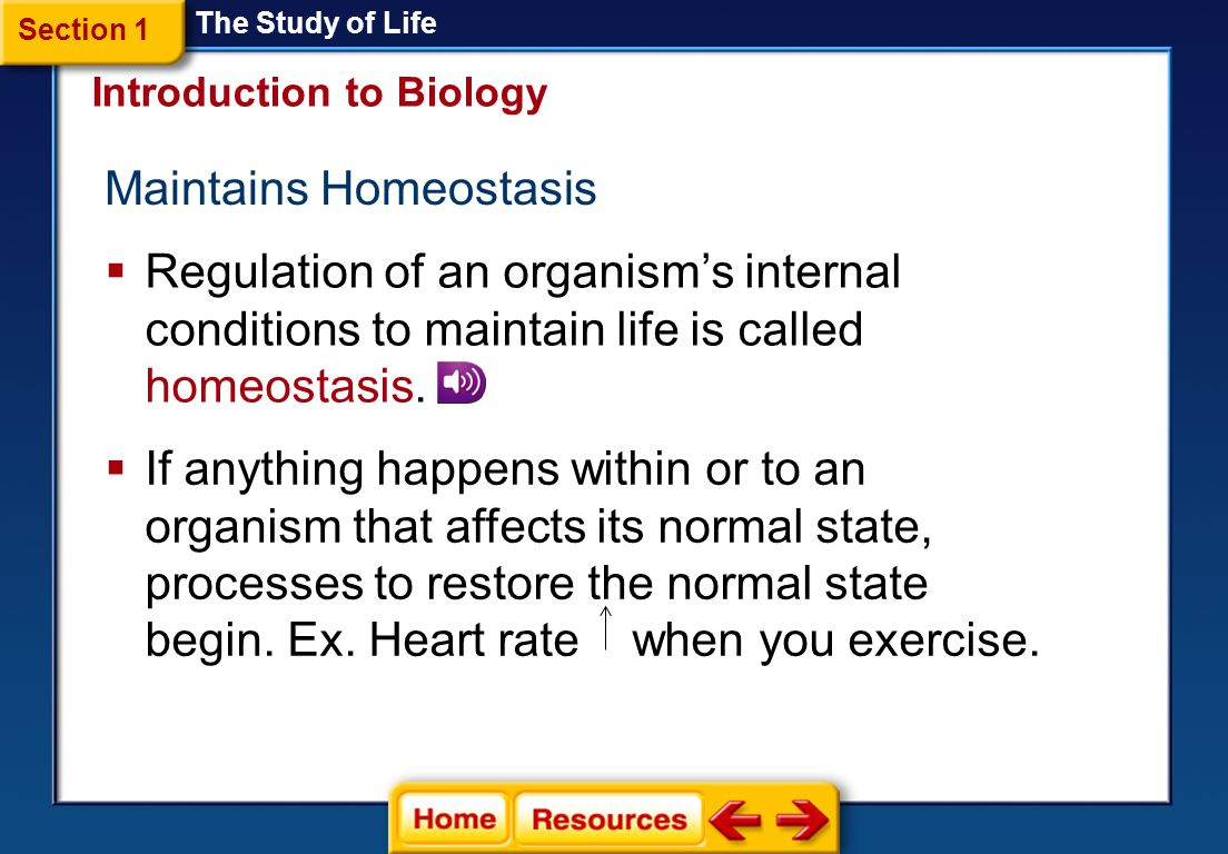 Maintains Homeostasis