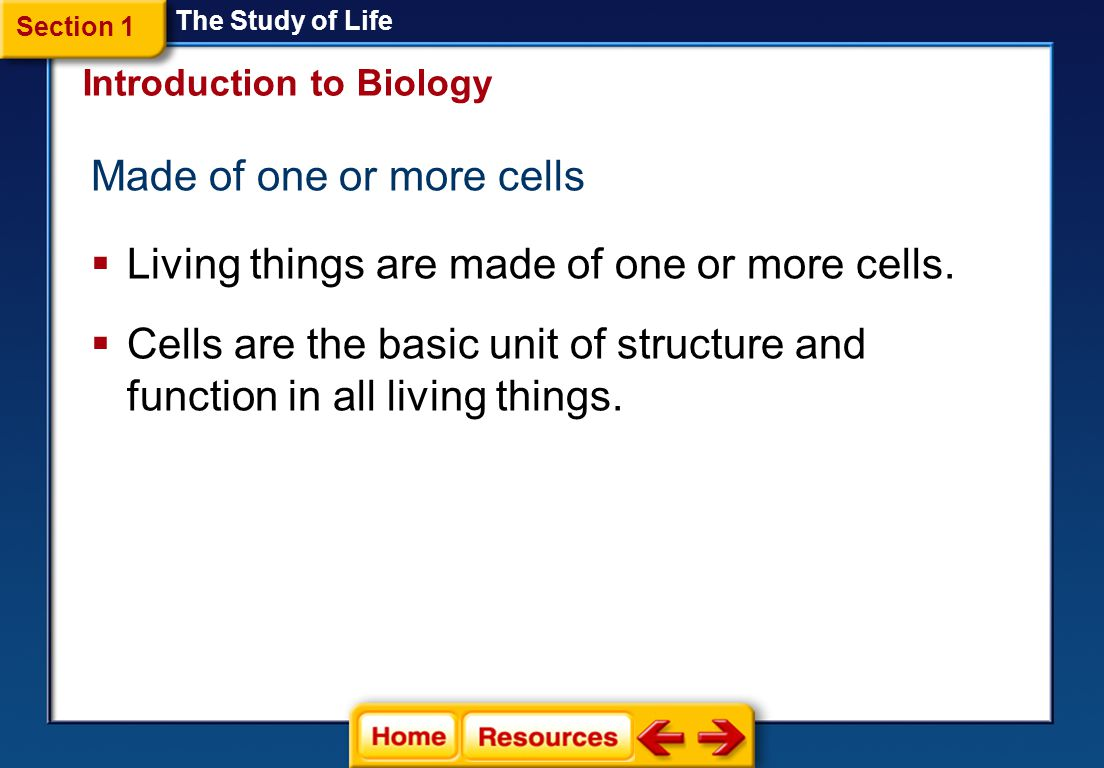 Made of one or more cells