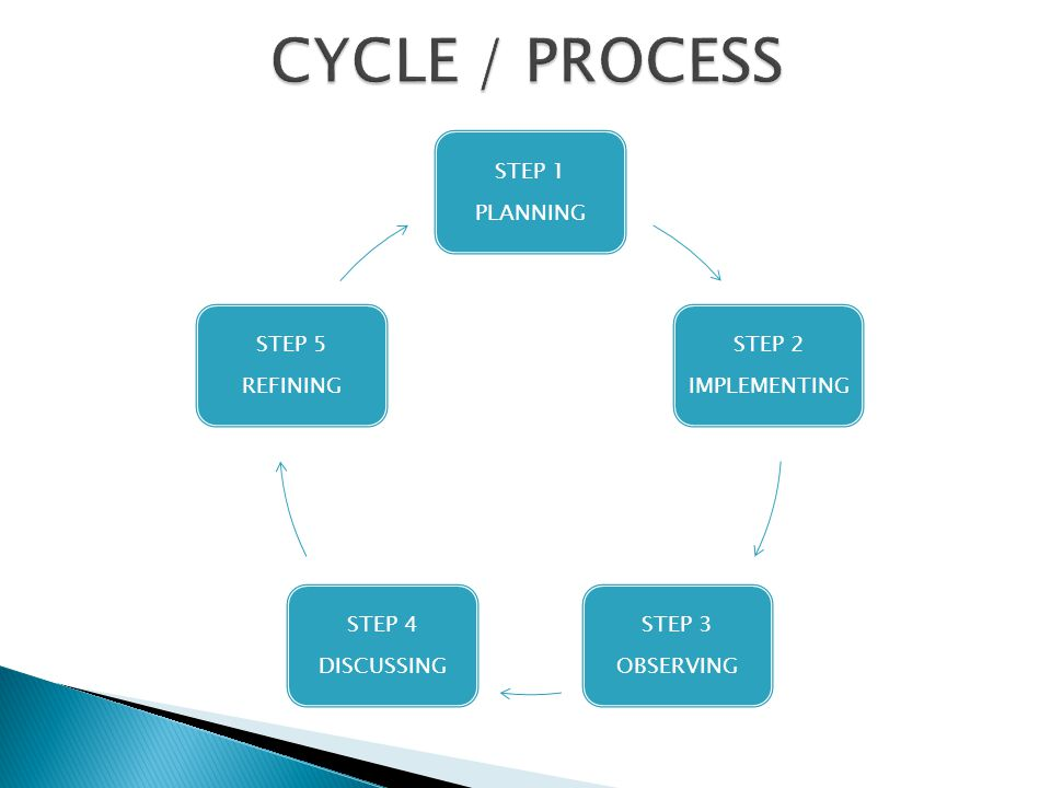 CYCLE / PROCESS STEP 1 PLANNING STEP 2 IMPLEMENTING STEP 3 OBSERVING