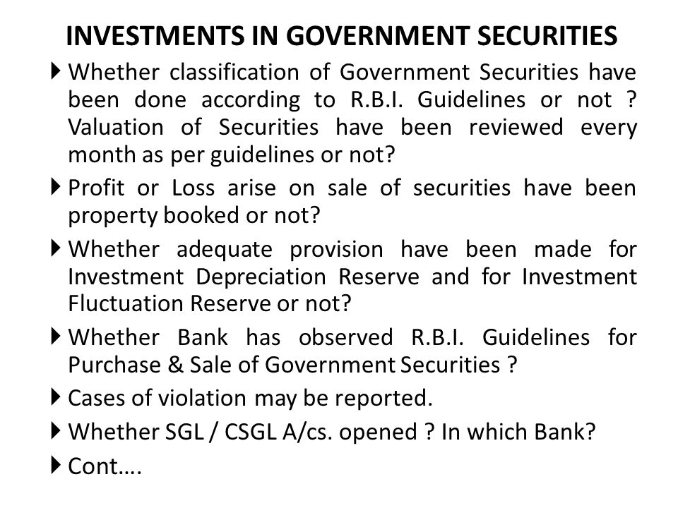 INVESTMENTS IN GOVERNMENT SECURITIES