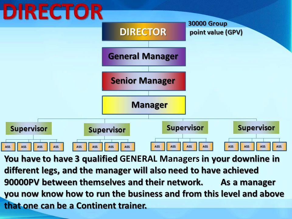 DIRECTOR DIRECTOR General Manager Senior Manager Manager