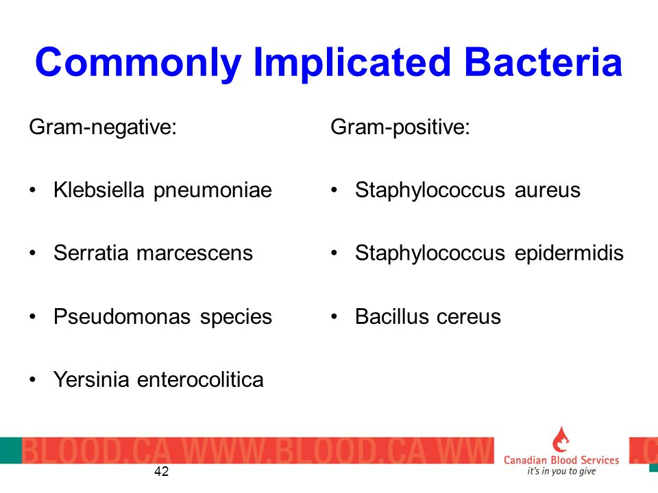 Commonly Implicated Bacteria