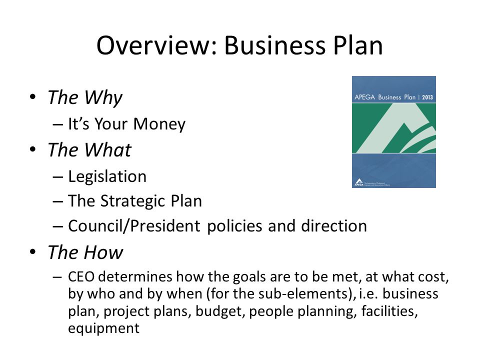 Overview: Business Plan