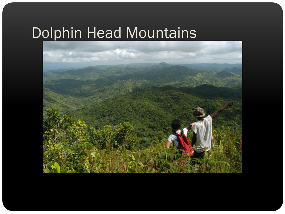 Dolphin Head Mountains