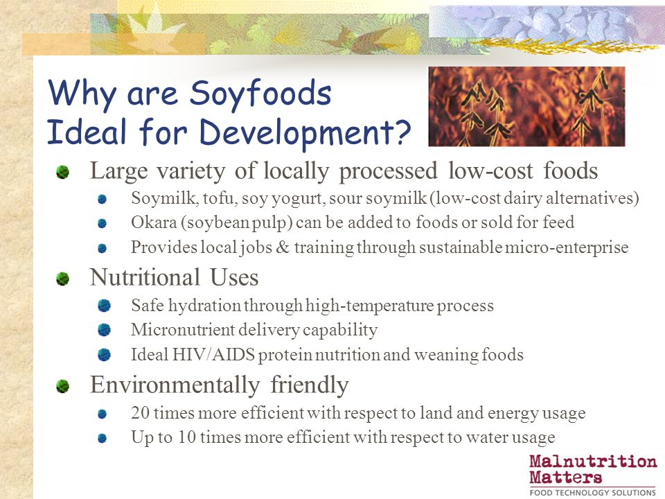 Why are Soyfoods Ideal for Development