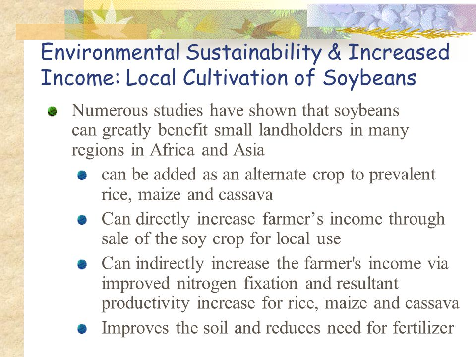Environmental Sustainability & Increased Income: Local Cultivation of Soybeans