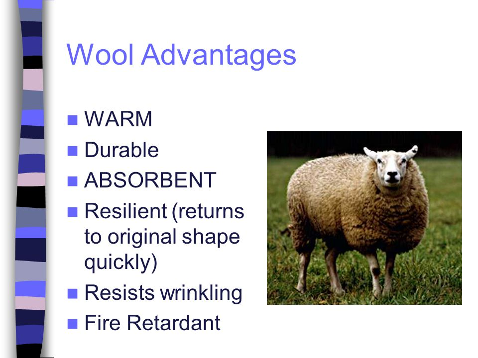Wool Advantages WARM Durable ABSORBENT