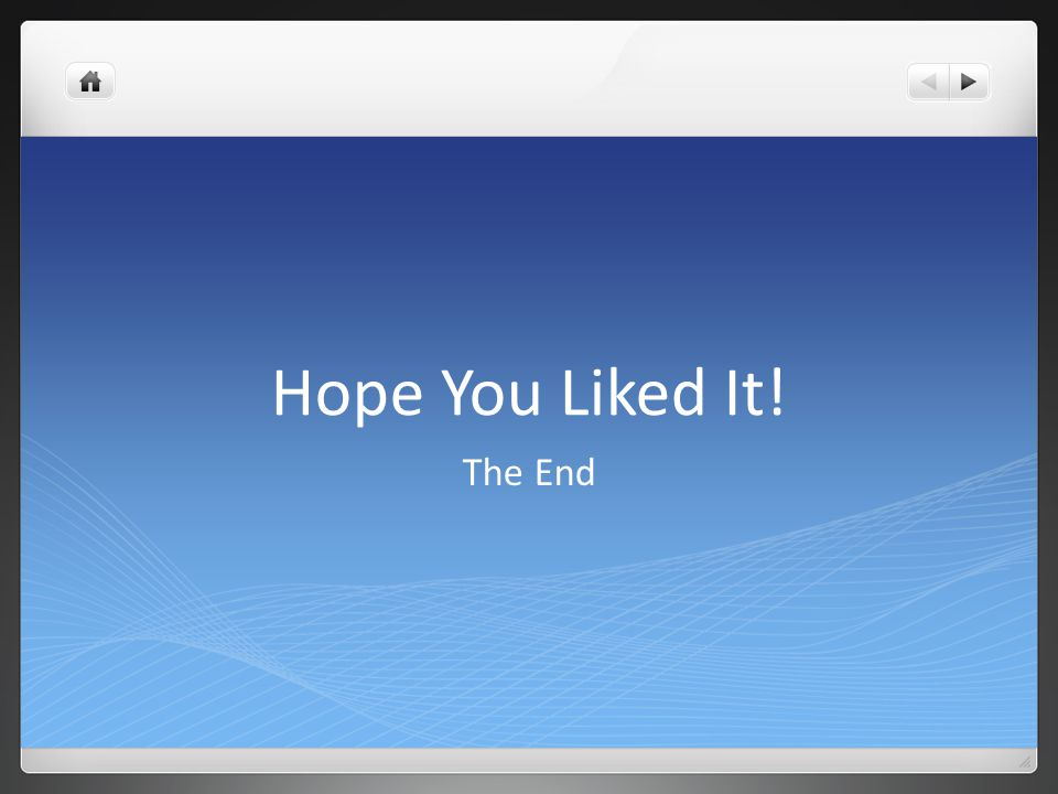 Hope You Liked It! The End