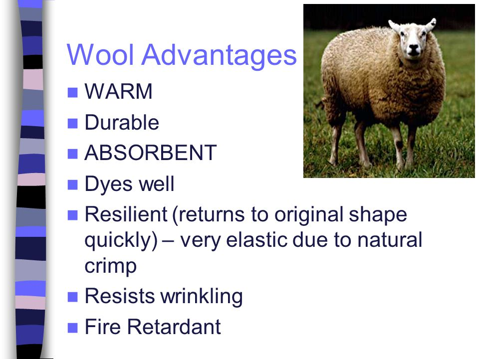 Wool Advantages WARM Durable ABSORBENT Dyes well