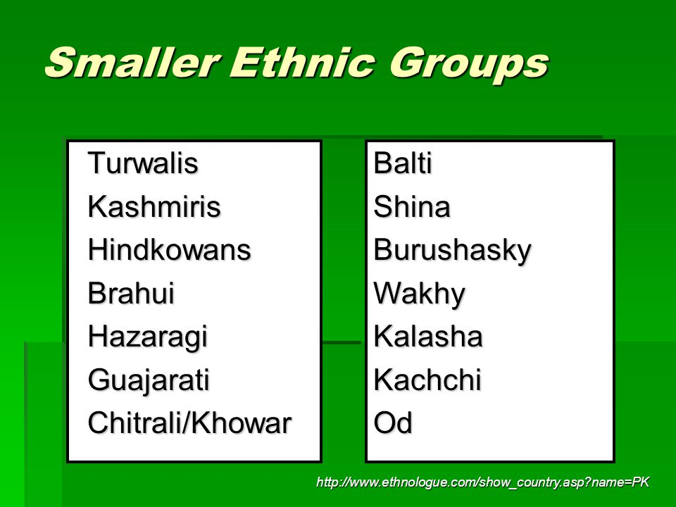 Smaller Ethnic Groups Turwalis Kashmiris Hindkowans Brahui Hazaragi