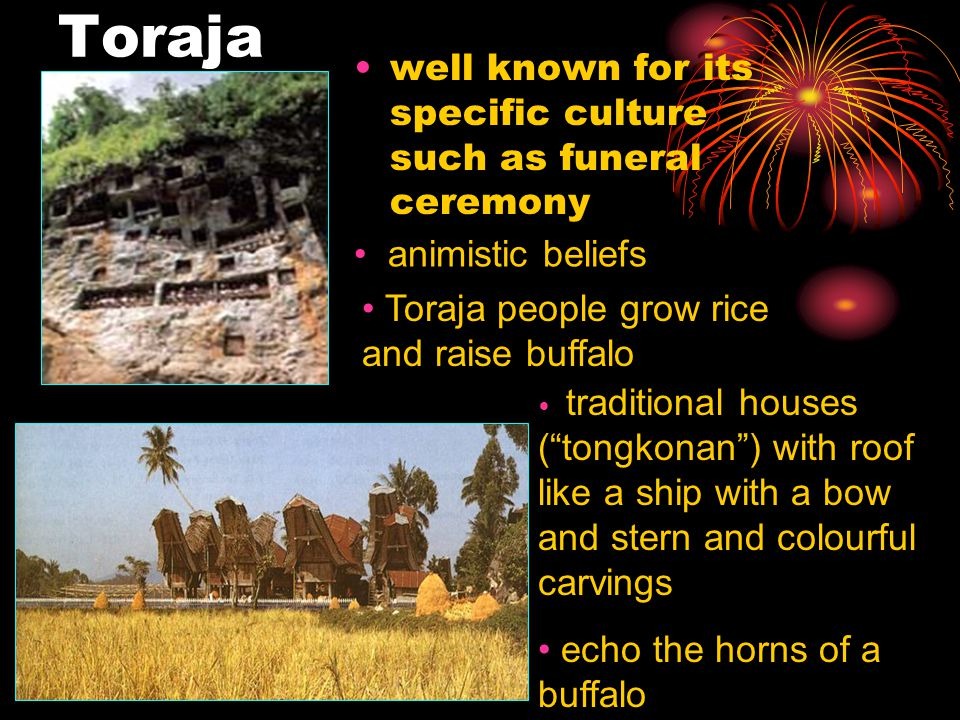 Toraja well known for its specific culture such as funeral ceremony