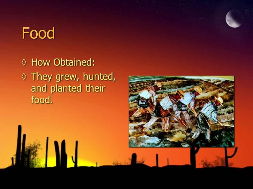 Food How Obtained: They grew, hunted, and planted their food.