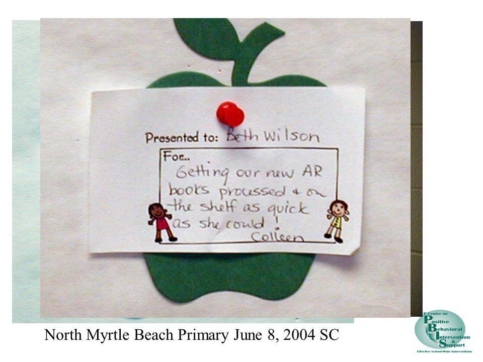 North Myrtle Beach Primary June 8, 2004 SC