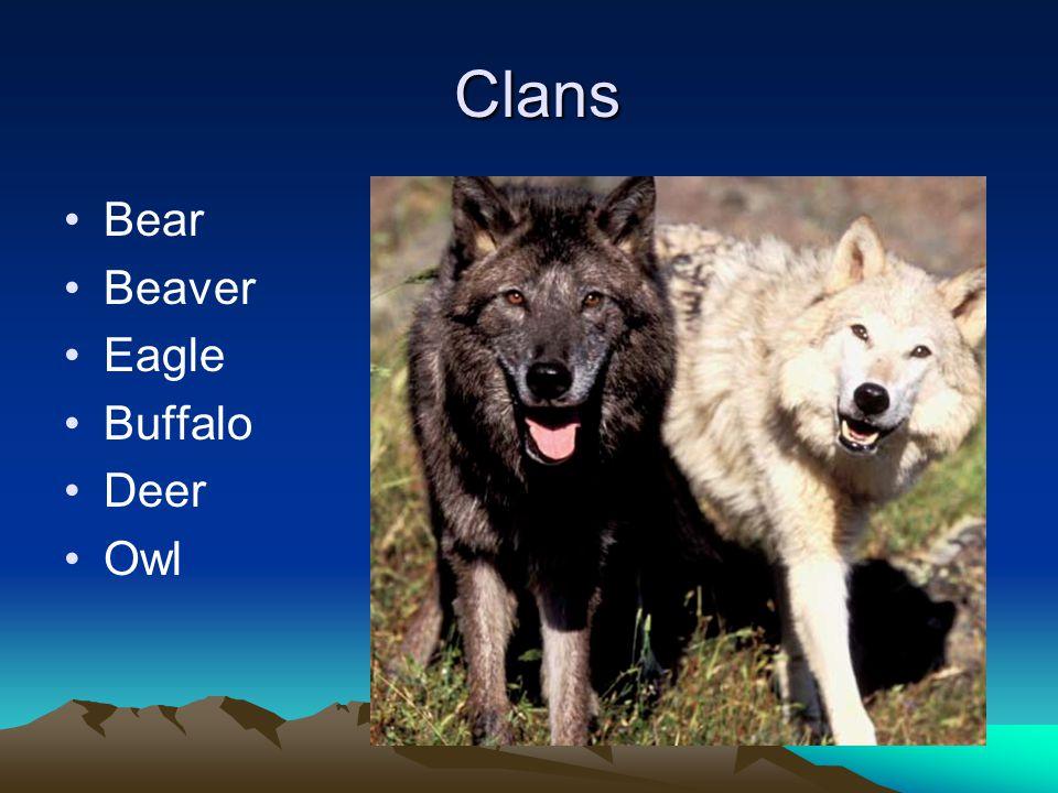 Clans Bear Beaver Eagle Buffalo Deer Owl