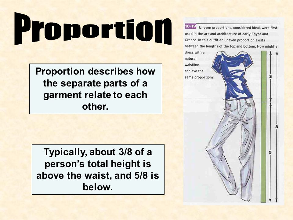 Proportion Proportion describes how the separate parts of a garment relate to each other.