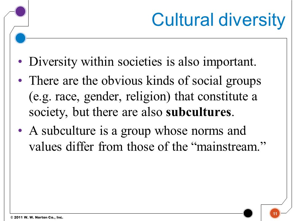 Cultural diversity Diversity within societies is also important.