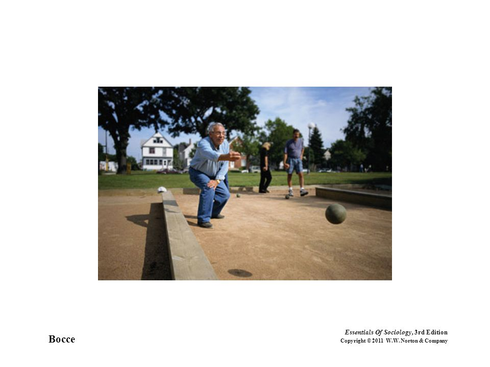 Bocce Essentials Of Sociology, 3rd Edition