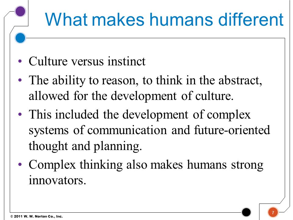 What makes humans different