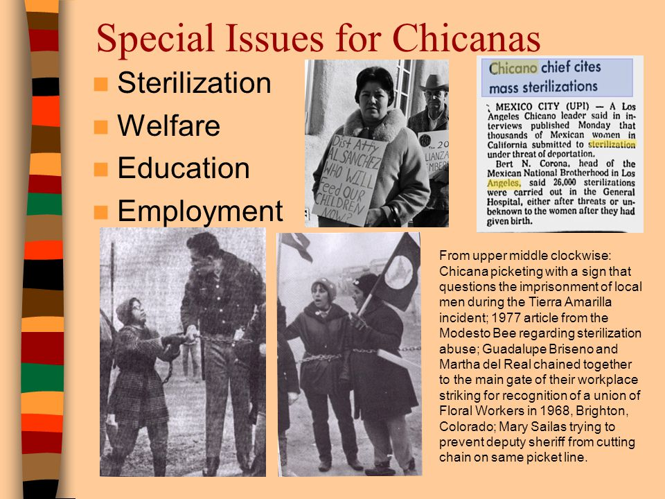 Special Issues for Chicanas