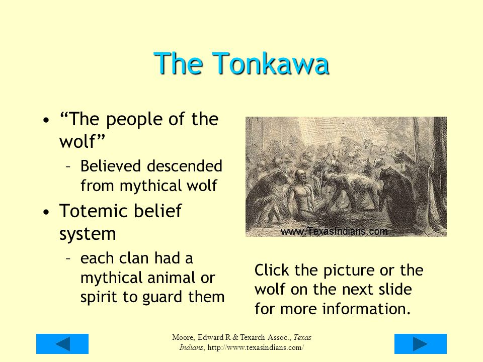 The Tonkawa The people of the wolf Totemic belief system