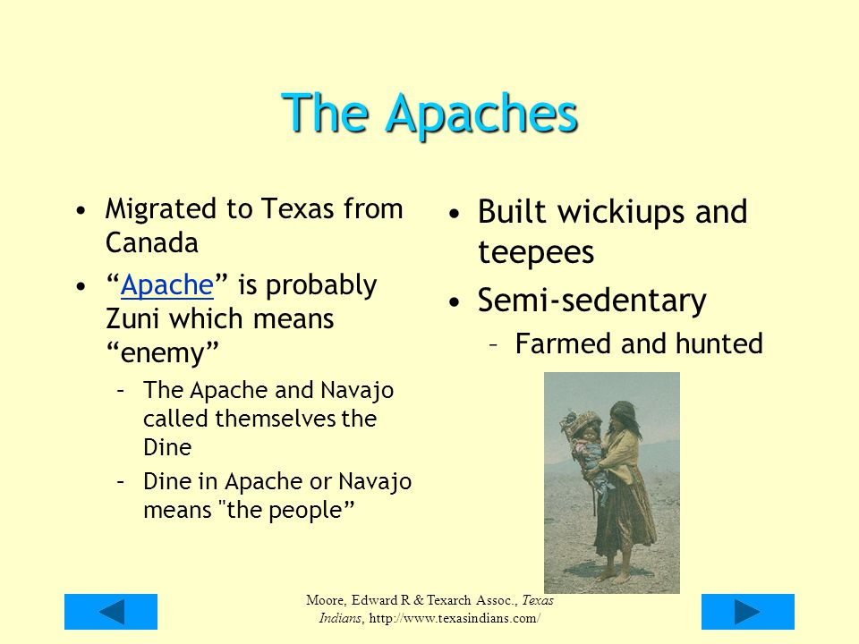 The Apaches Built wickiups and teepees Semi-sedentary