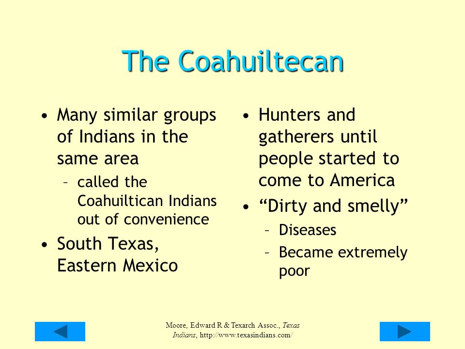 The Coahuiltecan Many similar groups of Indians in the same area