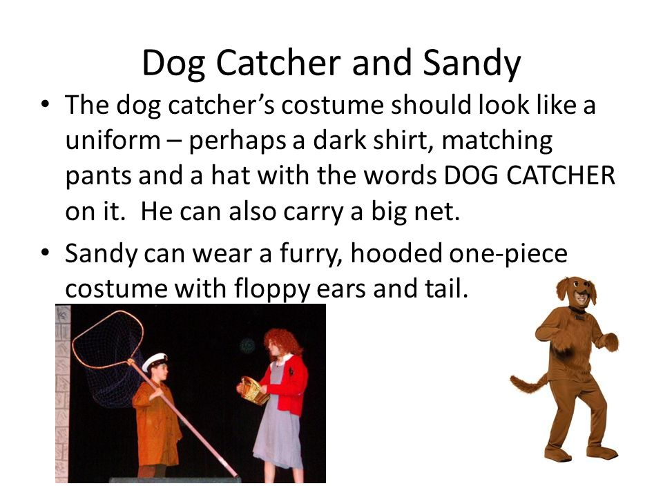 Dog Catcher and Sandy