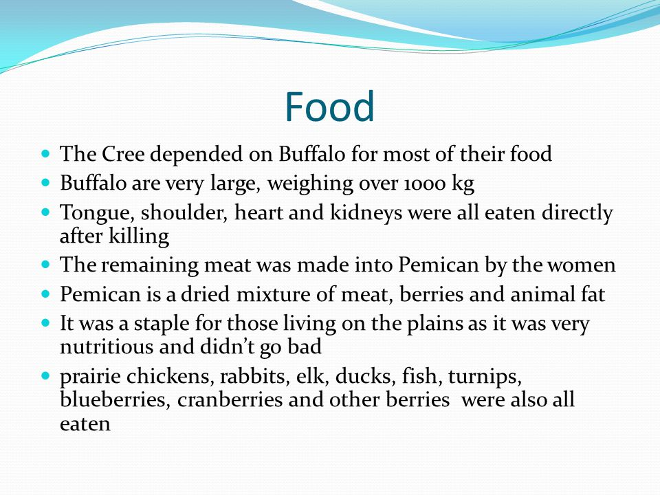 Food The Cree depended on Buffalo for most of their food
