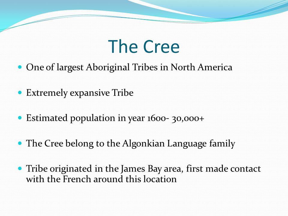 The Cree One of largest Aboriginal Tribes in North America