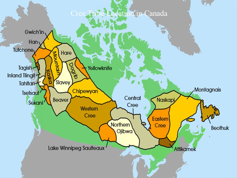 Cree Tribe Location in Canada