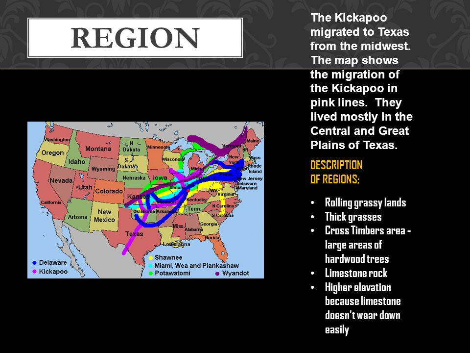 The Kickapoo migrated to Texas from the midwest
