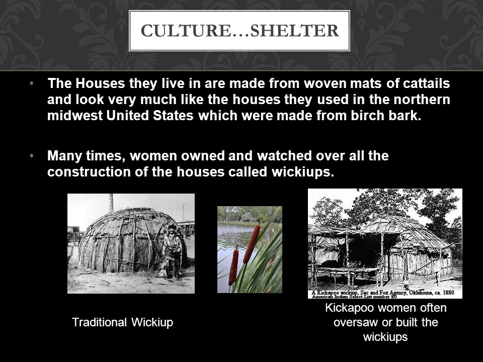 Kickapoo women often oversaw or built the wickiups