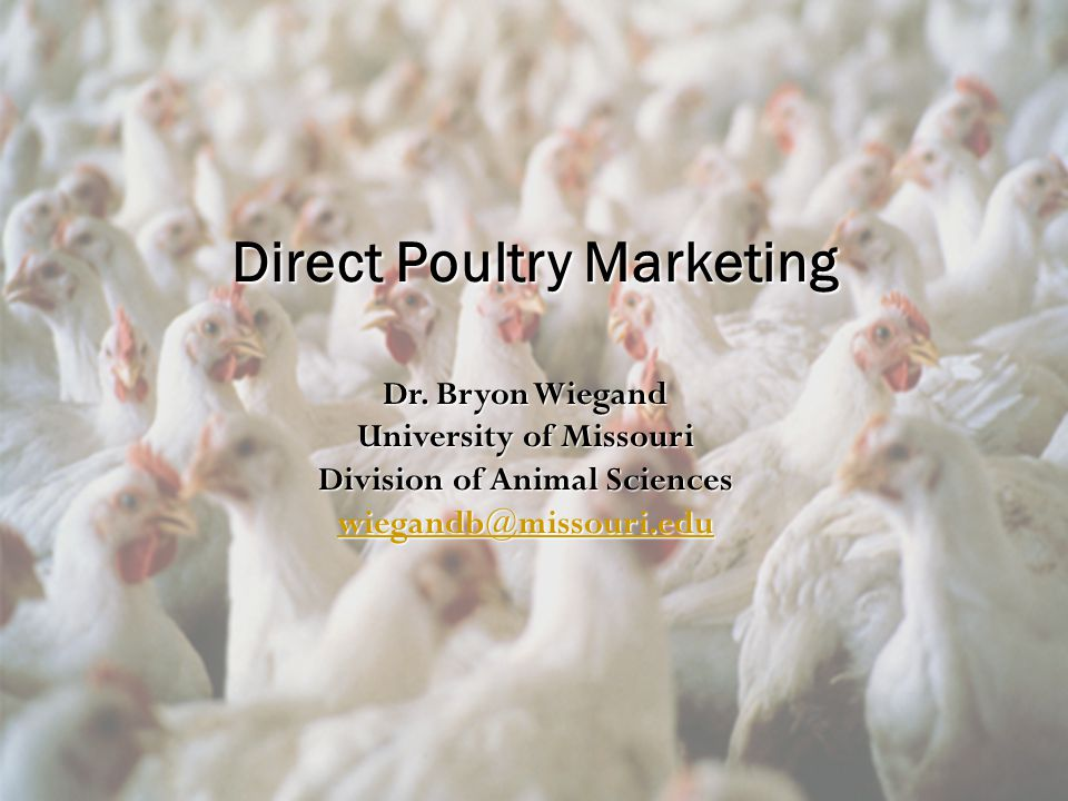Direct Poultry Marketing