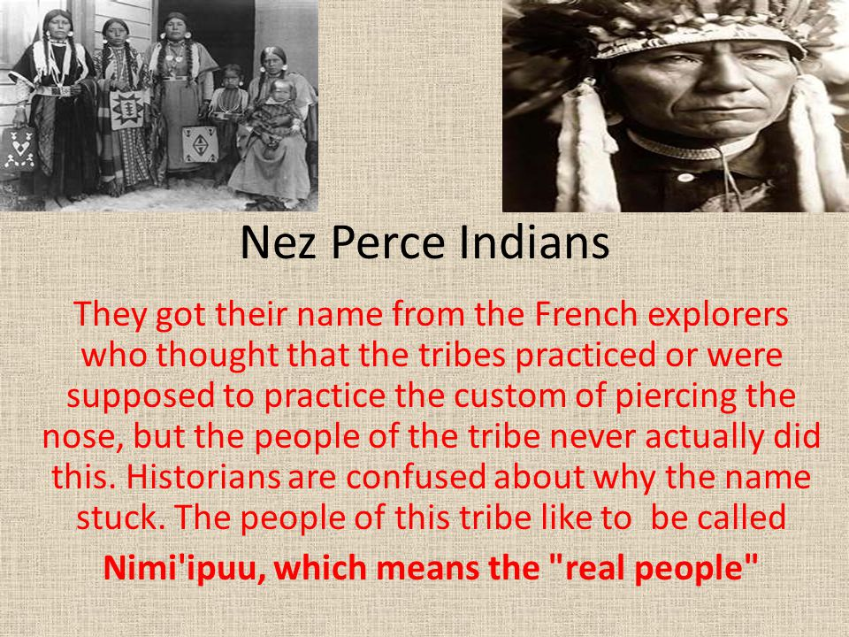 Nimi ipuu, which means the real people