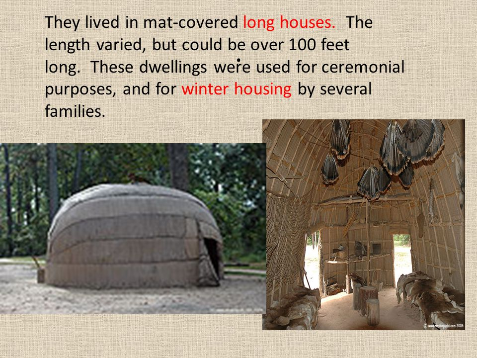 They lived in mat-covered long houses