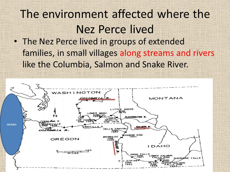 The environment affected where the Nez Perce lived